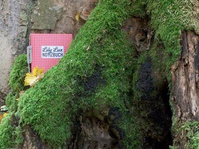 Foto vom Lily Lux Notizbuch im Grünen für die Geocaching-Aktion Reisendes Notizbuch